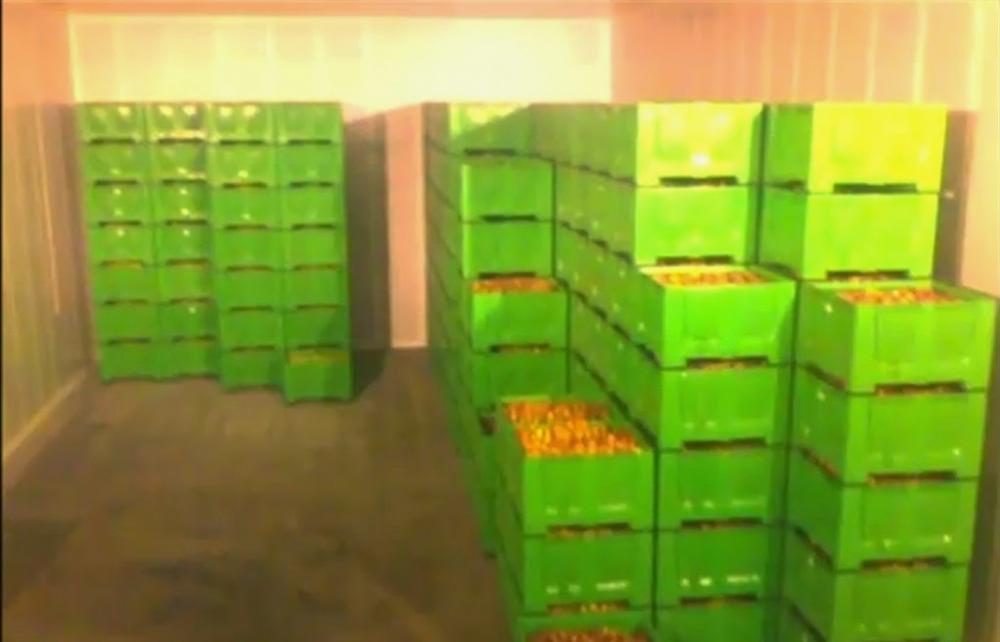 Phương pháp bảo quản nông sản bằng kho lạnh hiệu quả
